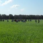 Passaggiata nel campo di grano