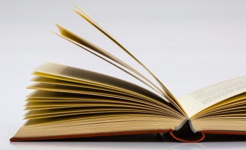 Si comunica che, per motivi organizzativi, il libro di Diritto e Legislazione previsto per il Primo anno del Liceo Linguistico Cod. ISBN 9788824745703 Titolo:BUONE REGOLE (LE) – DIRITTO ECONOMIA / […]